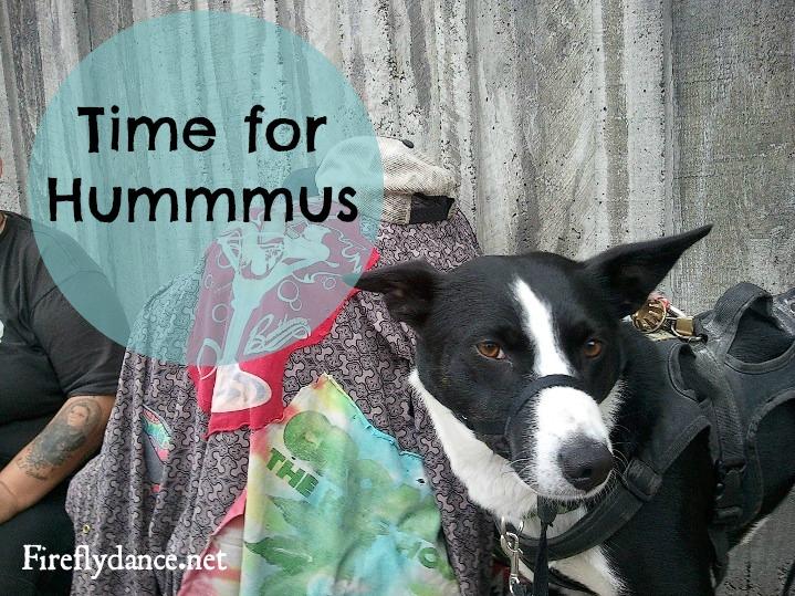 hummus5