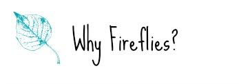 Why Fireflies?